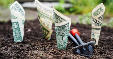 Batık Maliyet Yanılgısı – Sunk Cost Fallacy Nedir?